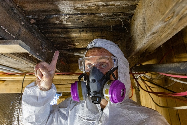 A mold detection expert points to a spot where water has seeped into the wood and caused dangerous mold to grow.