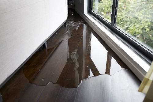 There is water just inside a home's window due to leaking.
